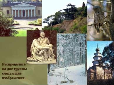 Распределите на две группы следующие изображения
