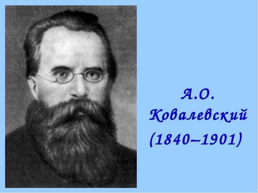 А.О. Ковалевский (1840–1901)