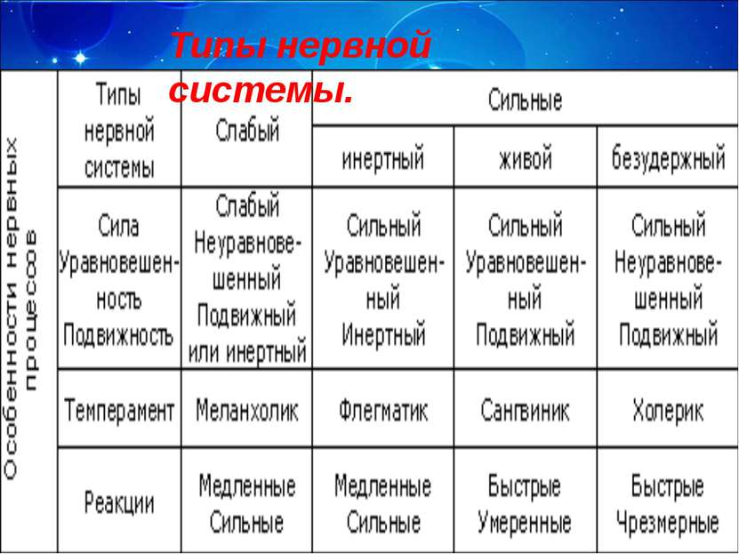 Типы нервной системы.