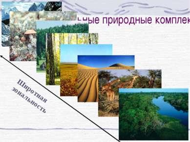 Зональные природные комплексы Арктические пустыни тундра тайга Смешанные и ши...