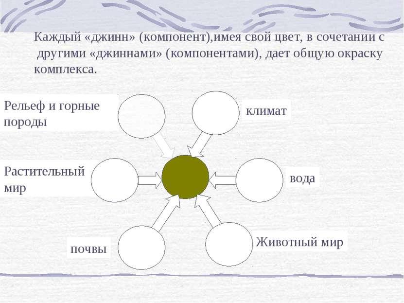 Каждый «джинн» (компонент),имея свой цвет, в сочетании с другими «джиннами» (...