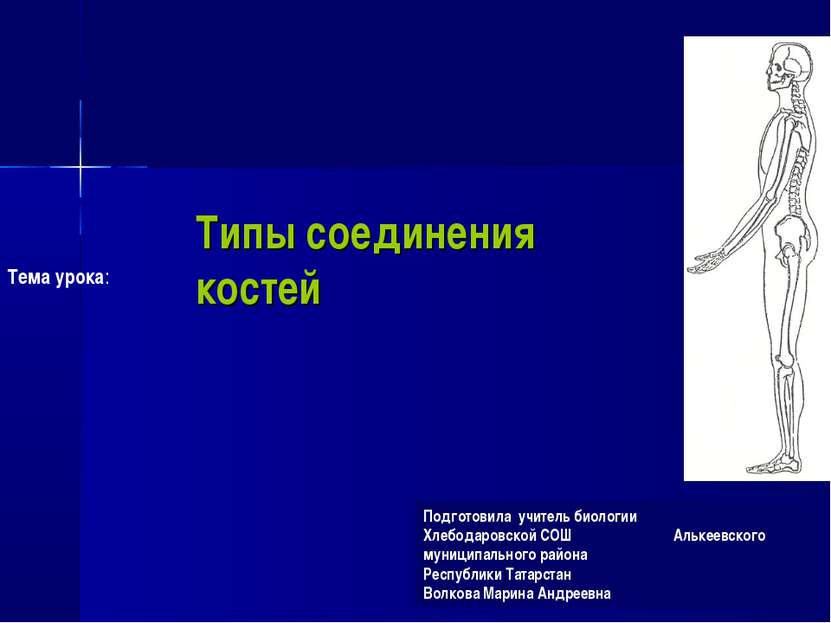 Типы соединения костей Подготовила учитель биологии Хлебодаровской СОШ Алькее...