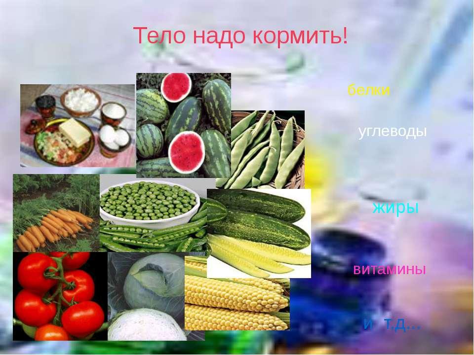 Тело надо кормить! белки жиры углеводы витамины и т.д...