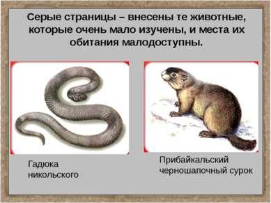 Серые страницы – внесены те животные, которые очень мало изучены, и места их ...
