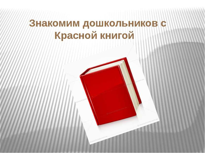 Знакомим дошкольников с Красной книгой
