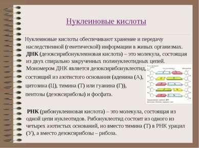 Нуклеиновые кислоты Нуклеиновые кислоты обеспечивают хранение и передачу насл...