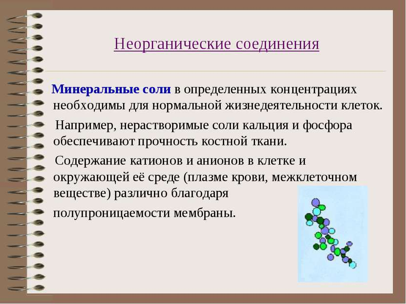 Неорганические соединения Минеральные соли в определенных концентрациях необх...