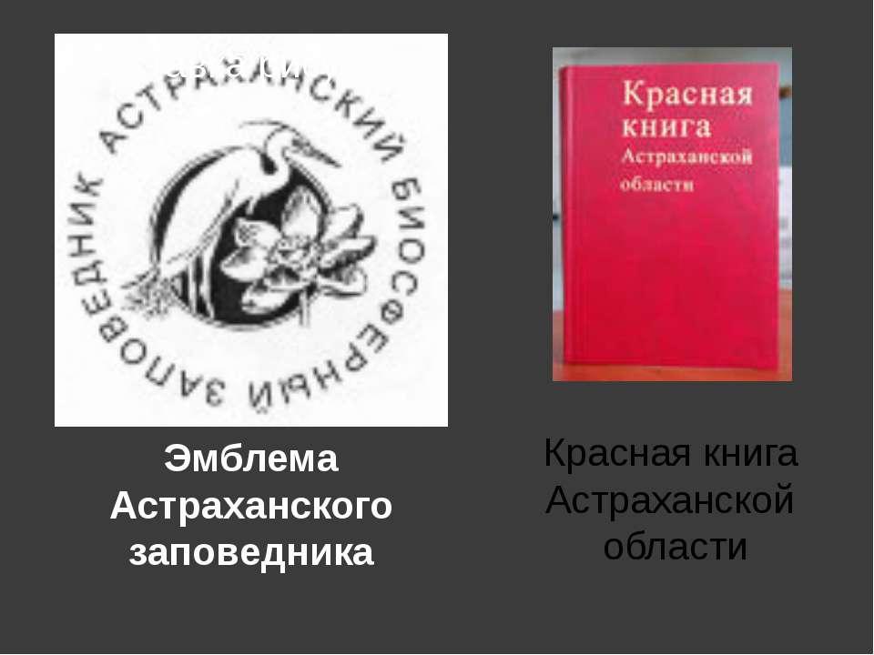Эмблема Астраханского заповедника Красная книга Астраханской области Красная ...