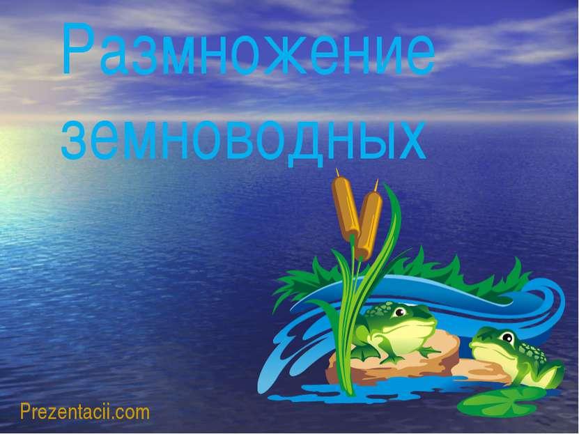 Prezentacii.com Размножение земноводных