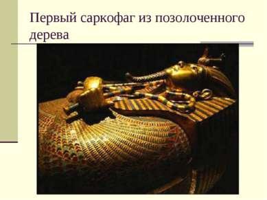 Первый саркофаг из позолоченного дерева