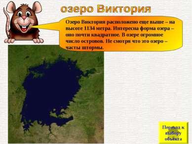 Озеро Виктория расположено еще выше – на высоте 1134 метра. Интересна форма о...