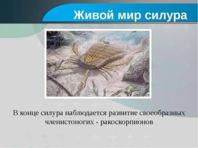 В конце силура наблюдается развитие своеобразных членистоногих - ракоскорпион...