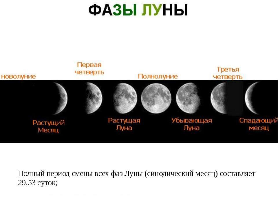 Полный период смены всех фаз Луны (синодический месяц) составляет 29.53 суток;