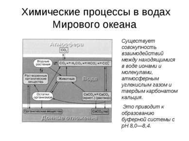 Химические процессы в водах Мирового океана Существует совокупность взаимодей...