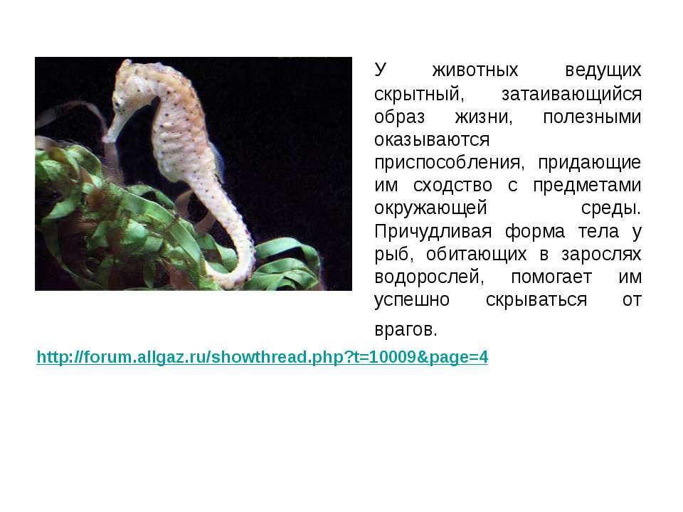 У животных ведущих скрытный, затаивающийся образ жизни, полезными оказываются...