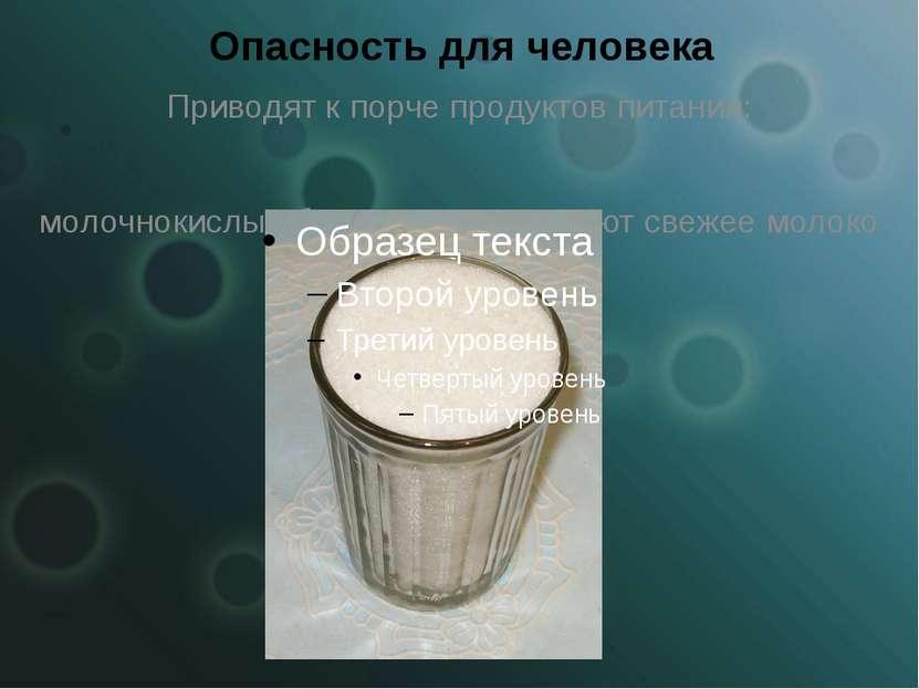 Опасность для человека Приводят к порче продуктов питания: молочнокислые бакт...