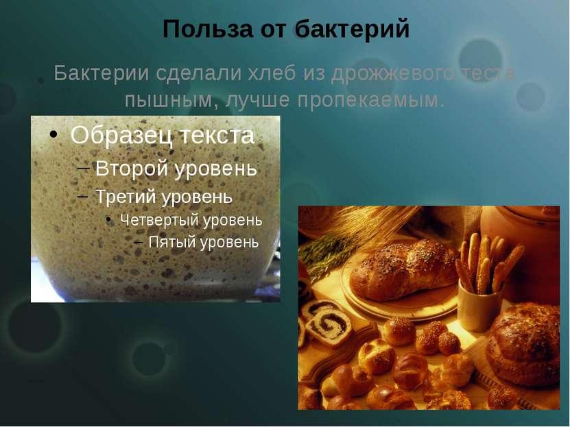 Польза от бактерий Бактерии сделали хлеб из дрожжевого теста пышным, лучше пр...