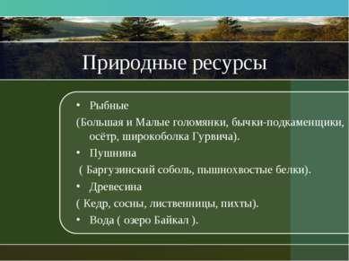 Природные ресурсы Рыбные (Большая и Малые голомянки, бычки-подкаменщики, осёт...