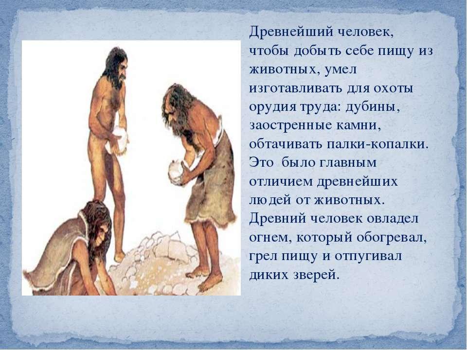 Древнейший человек, чтобы добыть себе пищу из животных, умел изготавливать дл...