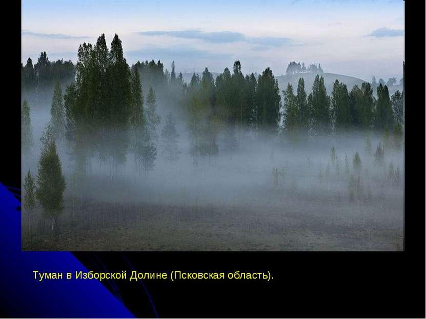 Туман в Изборской Долине (Псковская область).