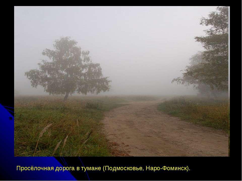Просёлочная дорога в тумане (Подмосковье, Наро-Фоминск).