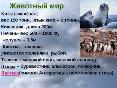 Животный мир Киты ( синий кит) вес 150 тонн, язык кита – 2 тонны, Кишечник- д...