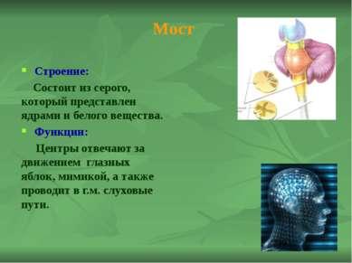 Рефлексы среднего мозга: 1. Одну ногу поставьте перед другой так, чтобы носок...