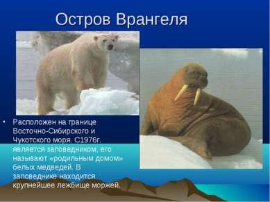 Остров Врангеля Расположен на границе Восточно-Сибирского и Чукотского моря. ...