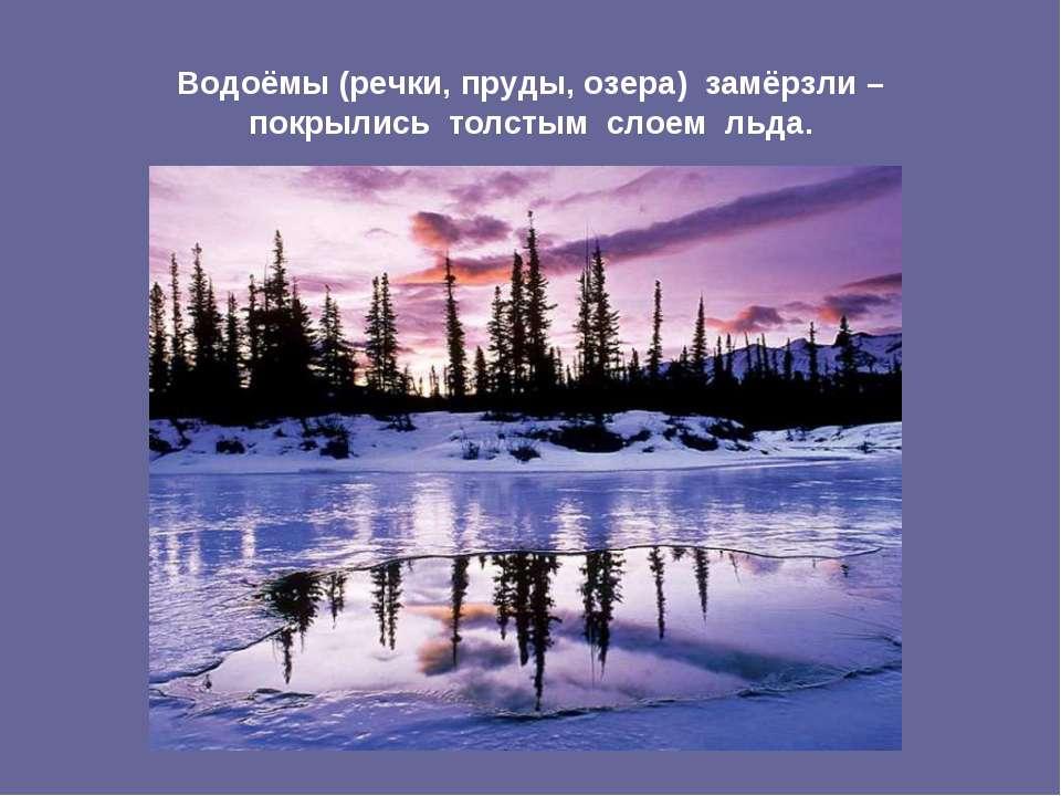Водоёмы (речки, пруды, озера) замёрзли – покрылись толстым слоем льда.