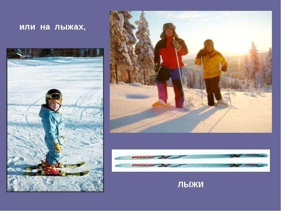 или на лыжах, ЛЫЖИ