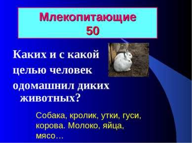 Млекопитающие 50 Каких и с какой целью человек одомашнил диких животных? Соба...