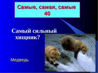 Самые, самая, самые 40 Самый сильный хищник? Медведь