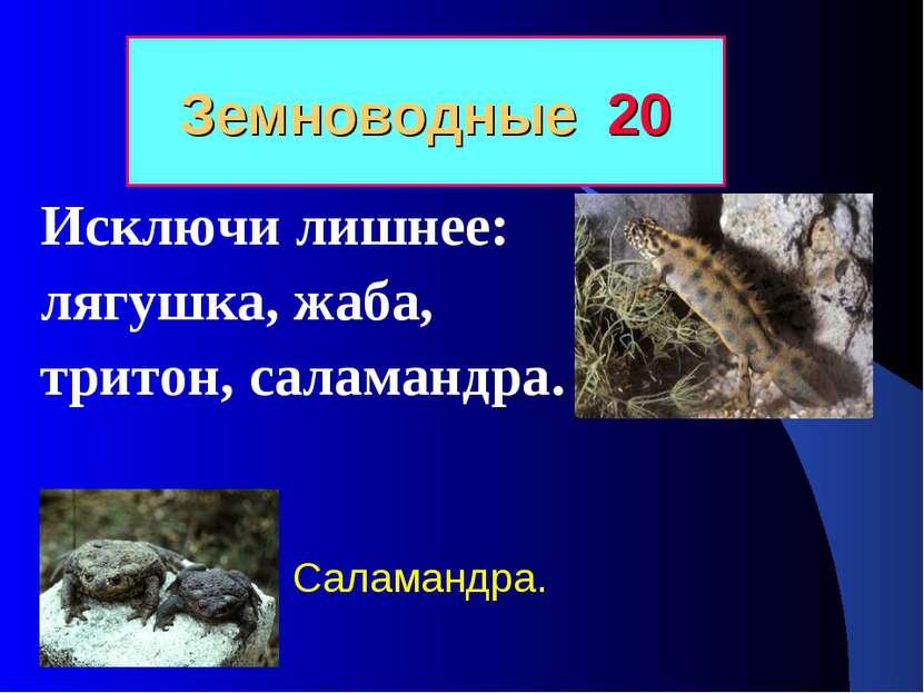 Земноводные 20 Исключи лишнее: лягушка, жаба, тритон, саламандра. Саламандра.
