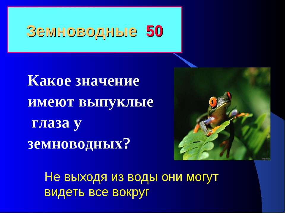 Земноводные 50 Какое значение имеют выпуклые глаза у земноводных? Не выходя и...
