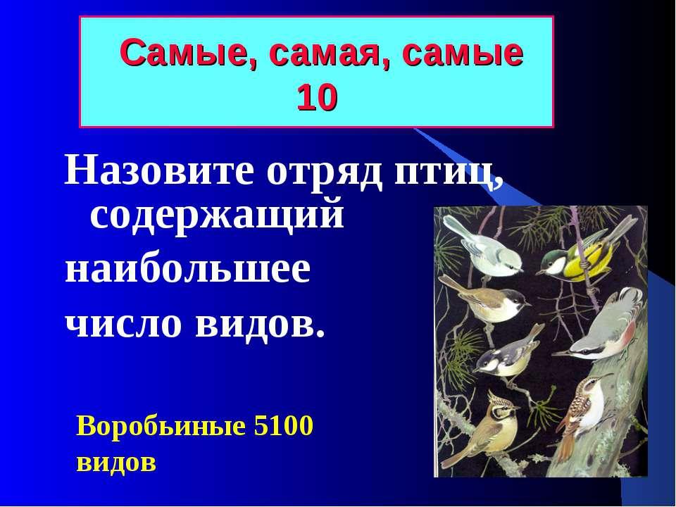 Самые, самая, самые 10 Назовите отряд птиц, содержащий наибольшее число видов...