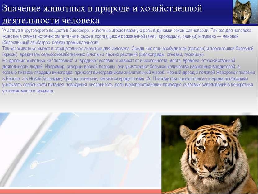 Значение животных в природе и хозяйственной деятельности человека Участвуя в ...