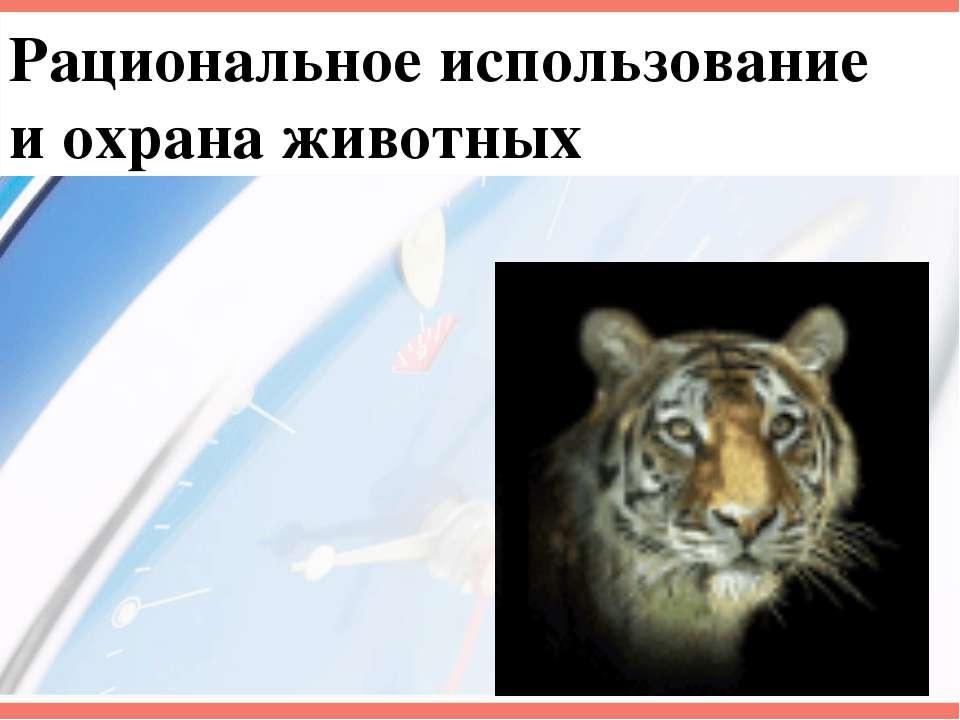 Рациональное использование и охрана животных