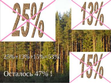 25%+13%+15%=53%. Осталось 47% !