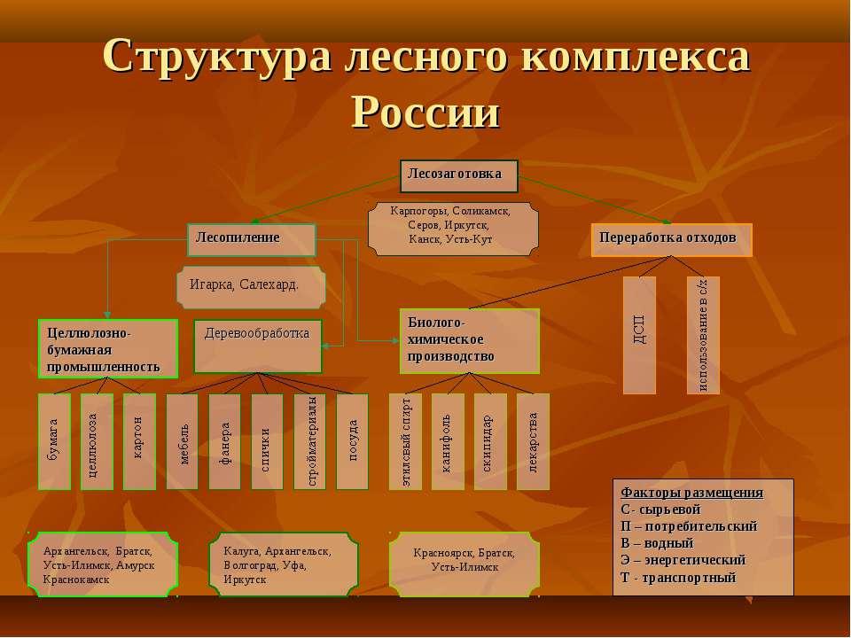 Структура лесного комплекса России Карпогоры, Соликамск, Серов, Иркутск, Канс...