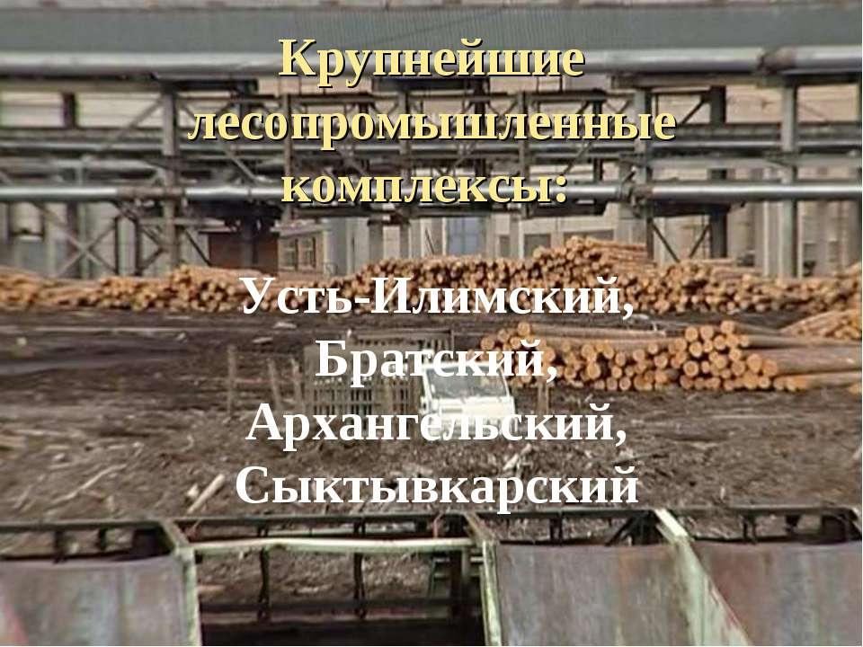 Крупнейшие лесопромышленные комплексы: Усть-Илимский, Братский, Архангельский...
