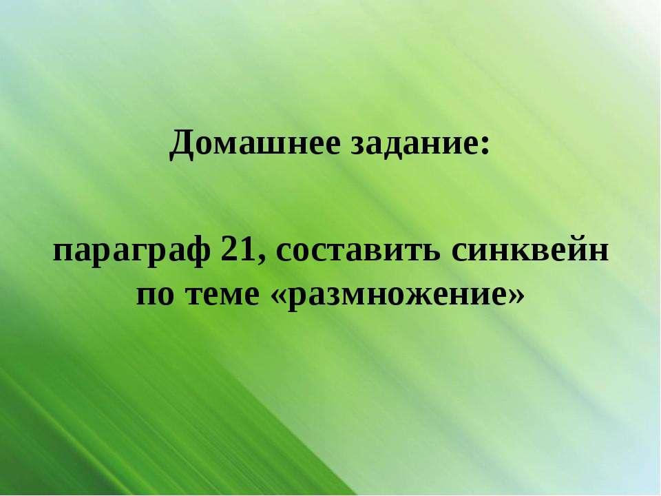 Домашнее задание: параграф 21, составить синквейн по теме «размножение»