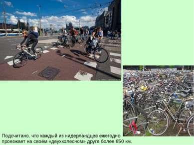 Подсчитано, что каждый из нидерландцев ежегодно проезжает на своём «двухколес...