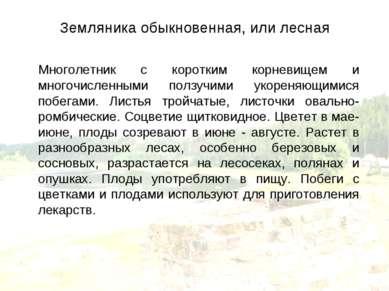 Земляника обыкновенная, или лесная Многолетник с коротким корневищем и многоч...