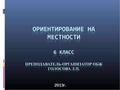 2013г.
