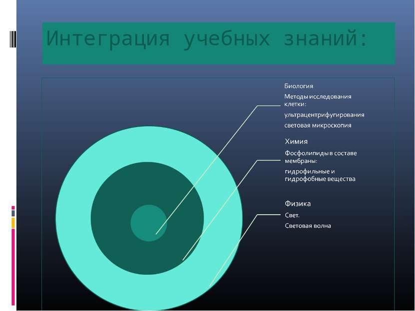 Интеграция учебных знаний: