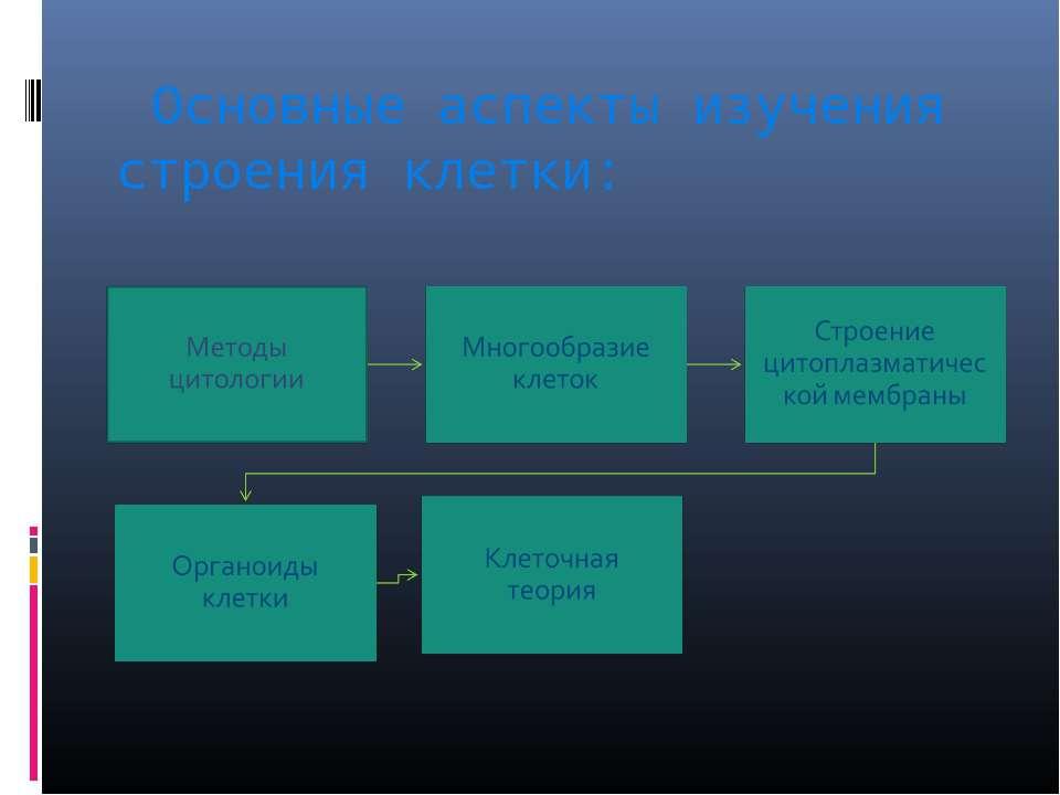 Основные аспекты изучения строения клетки:
