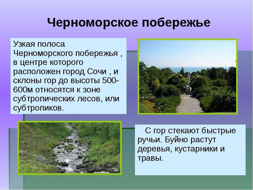 Узкая полоса Черноморского побережья , в центре которого расположен город Соч...