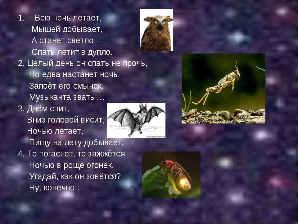 Всю ночь летает, Мышей добывает, А станет светло – Спать летит в дупло. 2. Це...