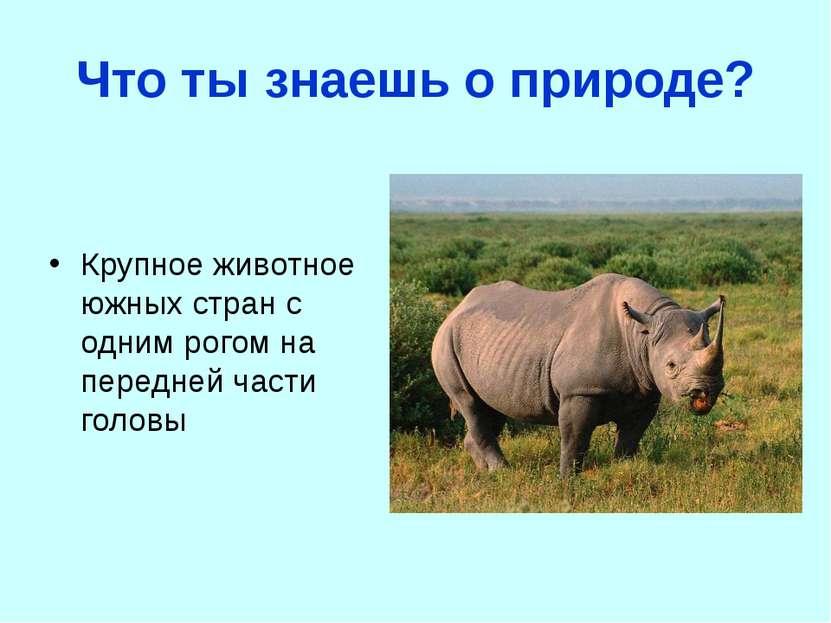 Что ты знаешь о природе? Крупное животное южных стран с одним рогом на передн...