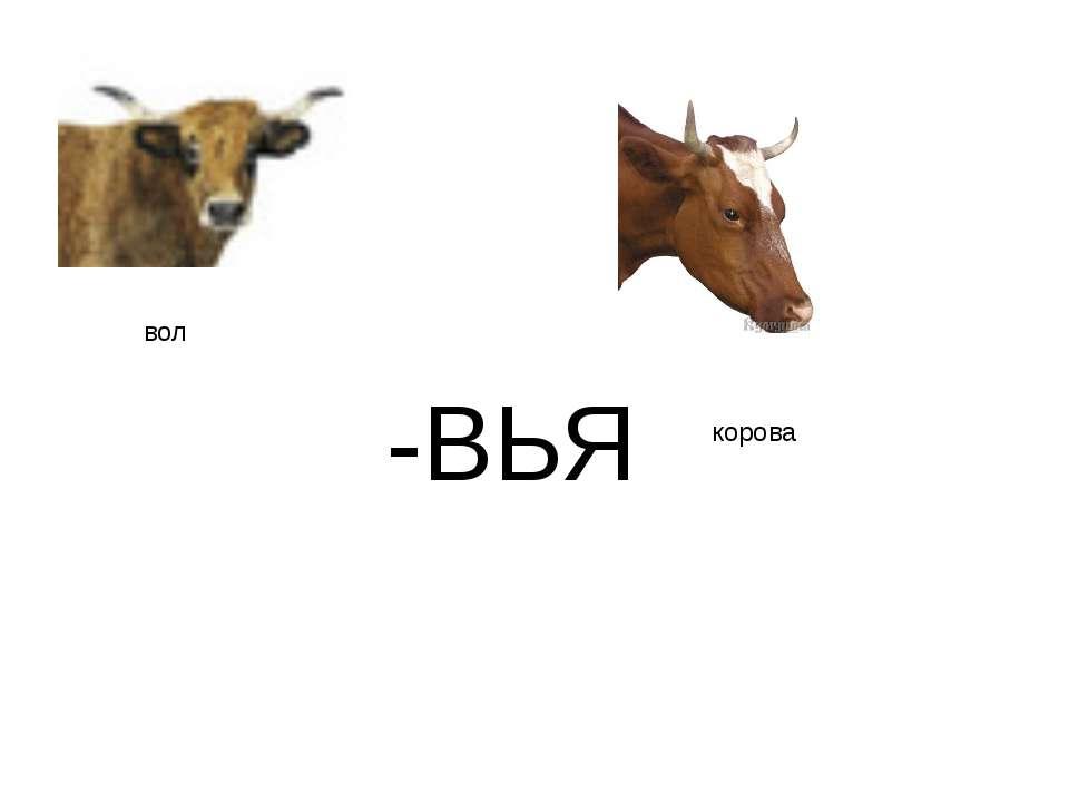 "-ВЬЯ вол корова http://www.deti-66.ru/конкурс ""Мастер презентаций"""